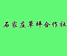 石家庄草坪种植专业合作社